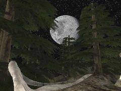 DM-MoonValley