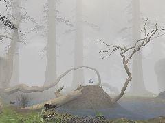 HollowRock+-+Misty
